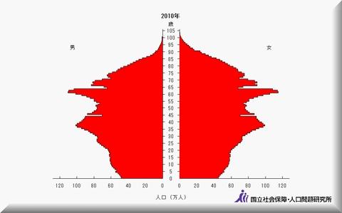 2010人口ピラミッド.jpg